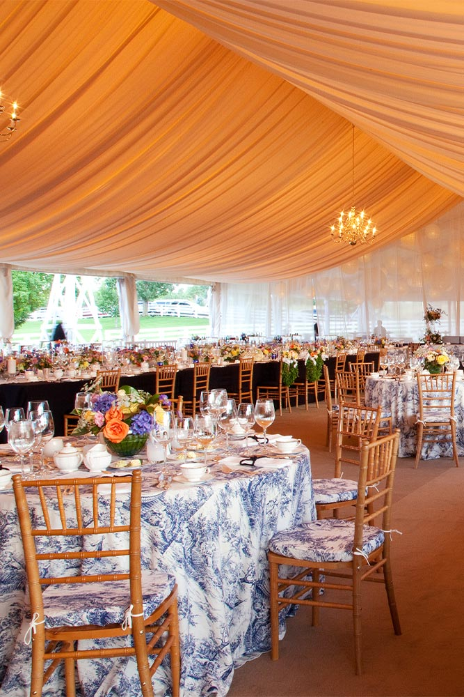 Party Lighting Design and Decor